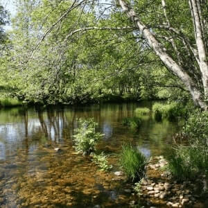 Evaluación de impacto ambiental en Castilla y León